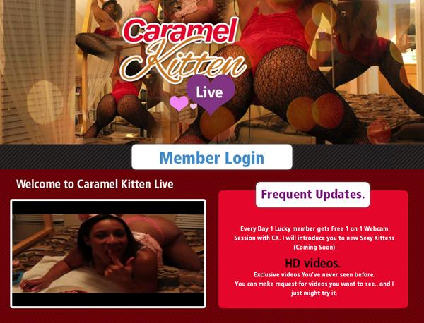 Free Caramel Kitten Live Video