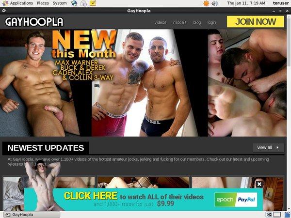 Free Gay Hoopla Logins