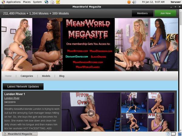 MegaSite World Mean Passwords