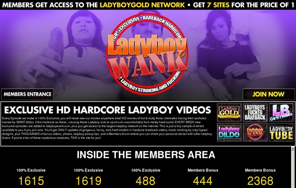 Ladyboy Wank Join By Check